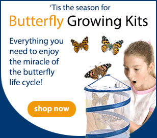 Butterfly Growing Kits. Everything you need to enjoy the miracle of the butterfly lifecycle!