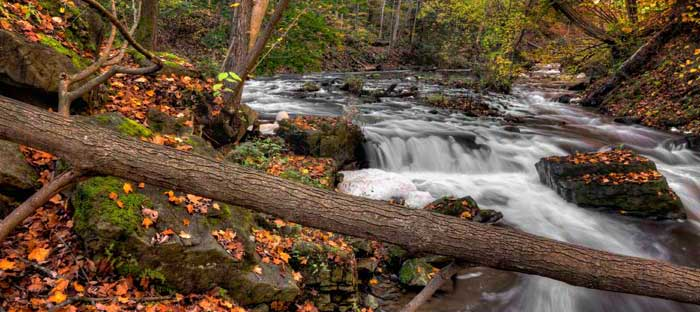 Fall is a wonderful time to enjoy shopping, dining, and the wonderful sights in Allentown, Lehigh Valley PA